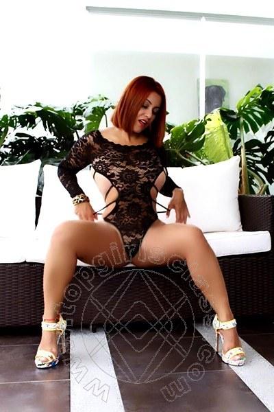 New Elena  PIACENZA 3485128098